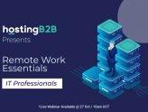 remote work IT professionals