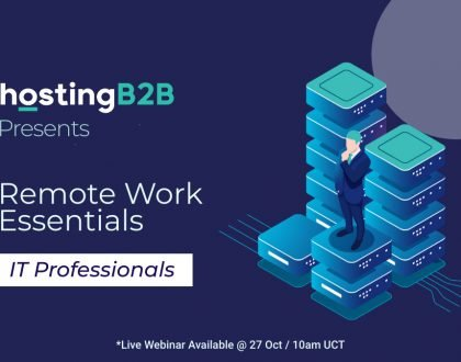 remote work IT professionals